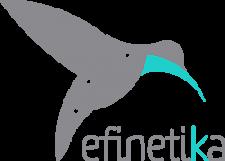 Efinetika Logo