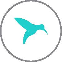 logotipo efinetika 2017